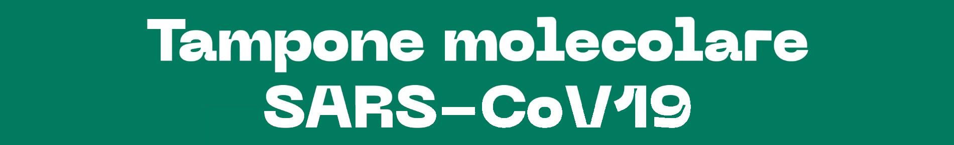 Tampone molecolare SARS CoV-19
